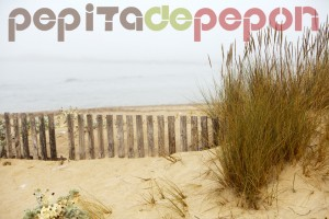 Sancti Petri (Chiclana de la Frontera) | Pepita de Pepón