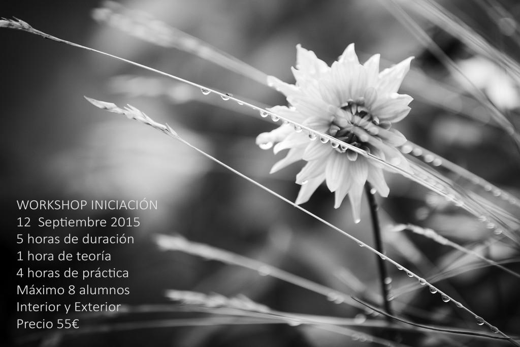 Cursos de iniciación a la fotografía y de fotografía de retrato